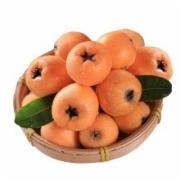 枇杷果质量检测