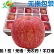 苹果农残检测