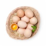 绿色食品认证  蛋类检测  绿色食品发展中心定点委托产品检测机构