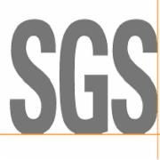 双排轮滑鞋质检服务  欧盟  SGS  BS EN 13899-2003滚轴运动设备.旱冰鞋.安全要求和试验方法