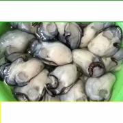 生蚝食品安全检测   海水产品检测  GB2733《鲜、冻动物性水产品卫生标准》