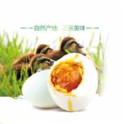 咸蛋食品安全检测  蛋及蛋制品检测  食品安全检测