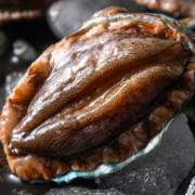 牡蛎 扇贝    海水贝   蛤蛏检测  鲍螺检测    海水产品检测    NYT1329     GB2733《鲜、冻动物性水产品卫生标准》   绿色食品认证检测