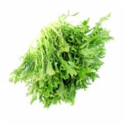 狗芽菜检测   芽菜检测    新鲜蔬菜检测  蔬菜污染物限量检测 GB2762《食品中污染物限量》