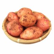 云南红皮迷你小土豆  农家自种马铃薯新鲜蔬菜红皮黄心山芋   淀粉及淀粉制品检测    GB2763《食品中农药最大残留限量》  GB2762《食品中污染物限量》