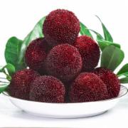 新鲜杨梅水果      生鲜水果质量检测 水果农药残留检测  GB2763《食品中农药最大残留限量》