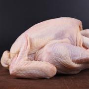 三黄鸡老母鸡笨鸡土鸡鲜鸡肉走地鸡   鸡肉检测   食品污染物 兽药残留 抗生素残留  GB16869《鲜、冻禽产品》