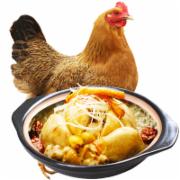 新鲜散养老母鸡土鸡    山林走地鸡草鸡柴鸡肉   鸡肉检测   食品污染物 兽药残留 抗生素残留  GB16869《鲜、冻禽产品》
