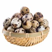 老家乡鹌鹑蛋新鲜生蛋  宝宝辅食农家杂粮喂养     蛋及蛋制品检测  绿色食品认证  GB2748《鲜蛋卫生标准》