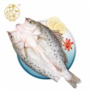 白蕉海鲈鱼     海产品海鲜干货干鱿鱼片   海鲜干货 海水产品检测