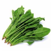 新鲜菠菜检测 大叶红根矮杆菠菜  新鲜叶菜类蔬菜  生鲜蔬菜检测   蔬菜农药残留检测 蔬菜中污染物限量检测