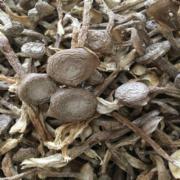 鹿茸菌菇检测  鹿茸菌菇干品特产 食用菌鹿茸菌 食用菌检测  食用菌农药残留检测  食用菌食品添加剂检测
