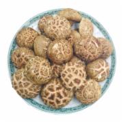 新鲜蘑菇检测 绿鲜知花菇新鲜蘑菇  生鲜蔬菜检测   蔬菜农药残留检测 蔬菜中污染物限量检测